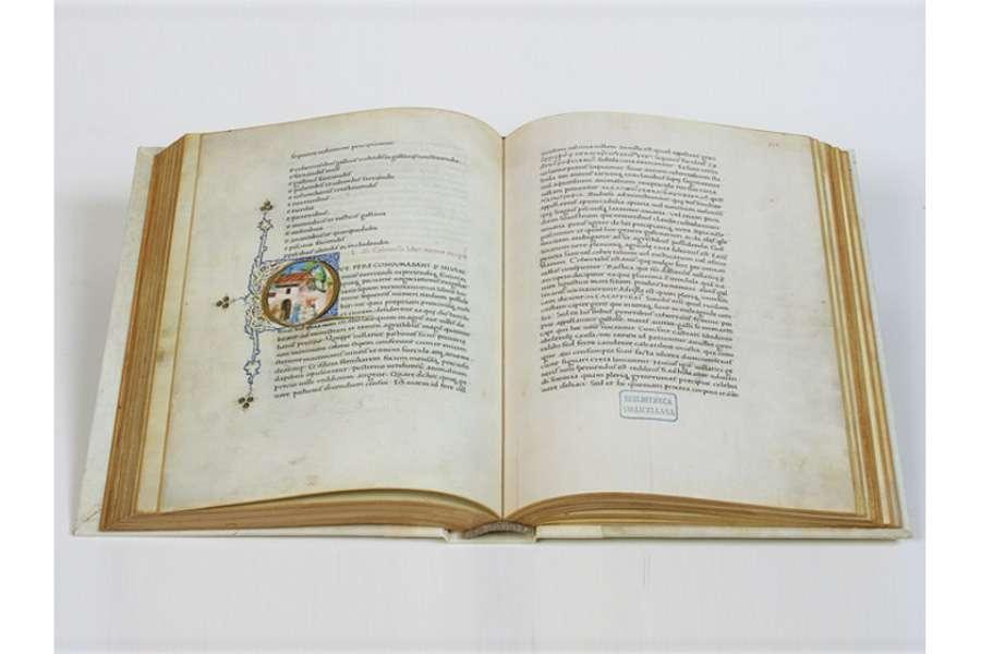 ILLUMINATED FACSIMILES®, Editalia – Columella. De Re Rustica – photo 04, copyright Editalia