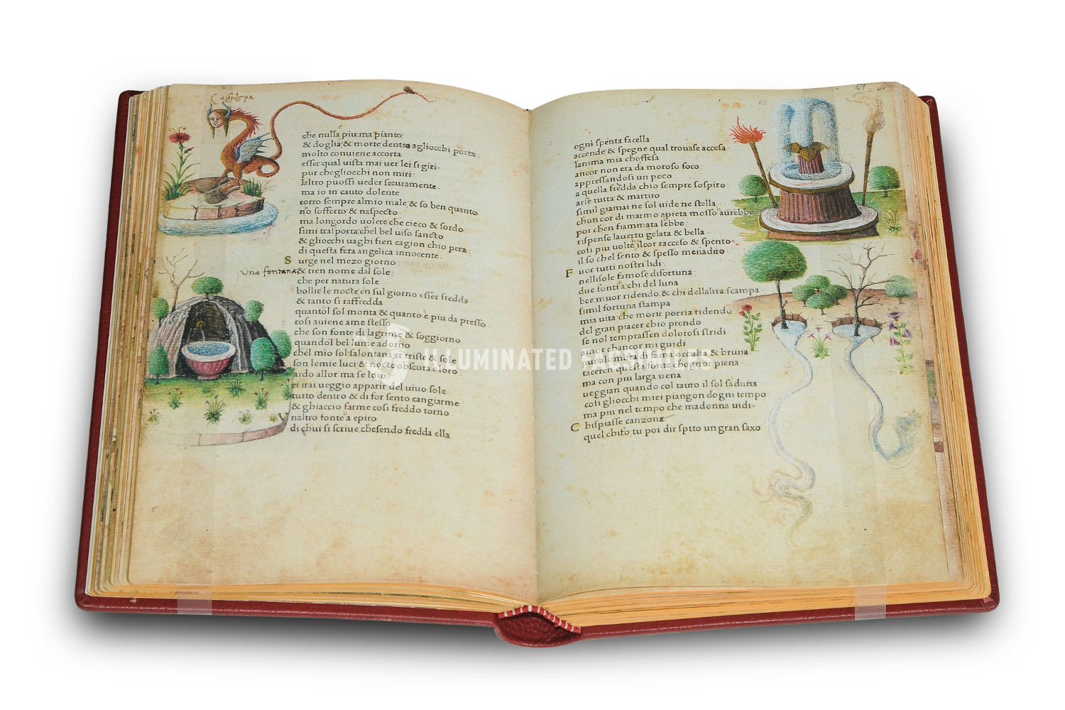 ILLUMINATED FACSIMILES®, Salerno Editrice – Petrarca Queriniano – photo 11, copyright Illuminated Facsimiles