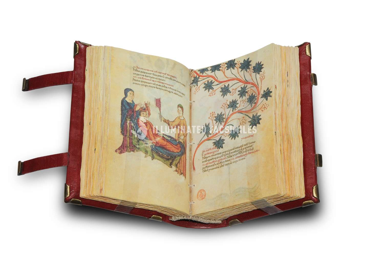 ILLUMINATED FACSIMILES®, Patrimonio Ediciones – Códice sobre Medicamentos de Federico II – photo 03, copyright Illuminated Facsimiles